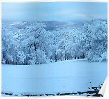 Flora's Winter Wonderland Poster