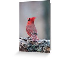 I Wish This Freezing Rain Would Stop!!! Greeting Card