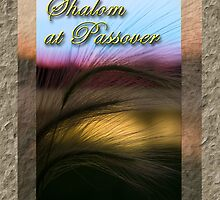 Shalom At Passover Grass Sunset by jkartlife