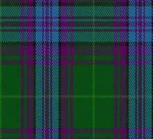 00074 Jones Clan (Hunting) Tartan Fabric Print Iphone Case by Detnecs2013