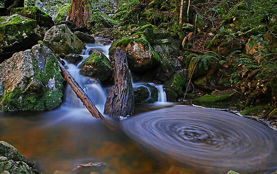 Upper Gads Creek by Damon Colbeck