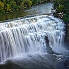 Lower Falls on The Genesee River by Mikell Herrick