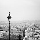 Parisian Rooftops by Andrew & Mariya  Rovenko