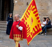 Volterra Colors by phil decocco