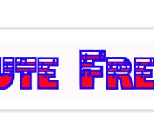 Flute Freak Red White & Blue Sticker