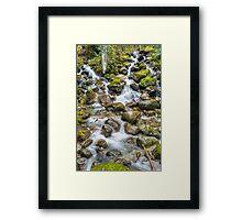 Bitter Creek Framed Print