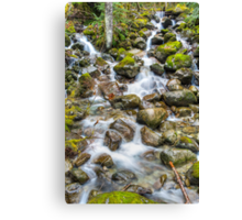 Bitter Creek Canvas Print