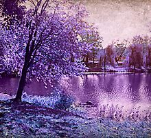 Lavender Landscape 1 - Franklin NJ, USA by Jane Neill-Hancock