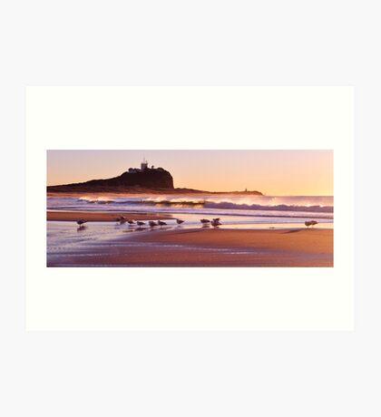 Sunrise at Nobbys Beach Art Print