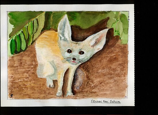 Fennec Fox by Greybeard