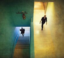 Up and down by Adrian Donoghue