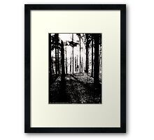 Deer stands in the woods Framed Print