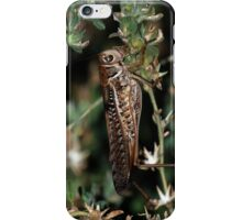 Locust iPhone Case/Skin