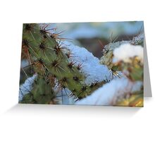 Chilled Prickly Pear Cacti Greeting Card