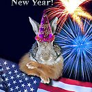 New Years Bunny Rabbit by jkartlife