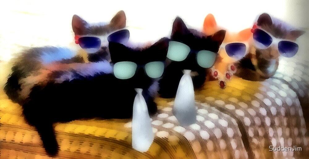 Five Kool Kats by SuddenJim