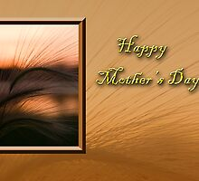 Mother's Day Grass Sunset by jkartlife