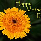 Yellow Flower - Mother&#x27;s Day card by cclaude