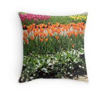 Colourful Tulips in the Keukenhof Gardens  Throw Pillow