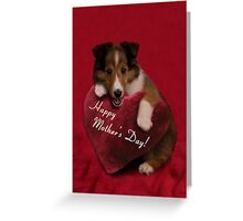 Mother's Day Sheltie Puppy Greeting Card
