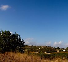 Panoramic country by laupri