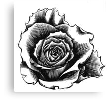 Rose Tattoo Too - Ink Drawing Canvas Print