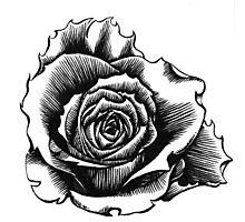 Rose Tattoo Too - Ink Drawing Photographic Print