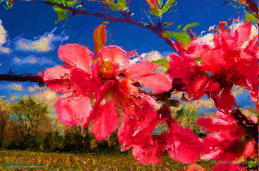 Blossoms of Pink by michaelasamples