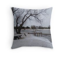 The Pond In Winter  Throw Pillow