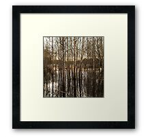 Water Line Framed Print