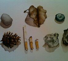 findings. by abigailswallow