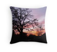 Sun Sets in Suburbia  Throw Pillow