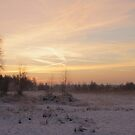 Wintersunset by liesbeth