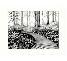 Path in the woods Art Print