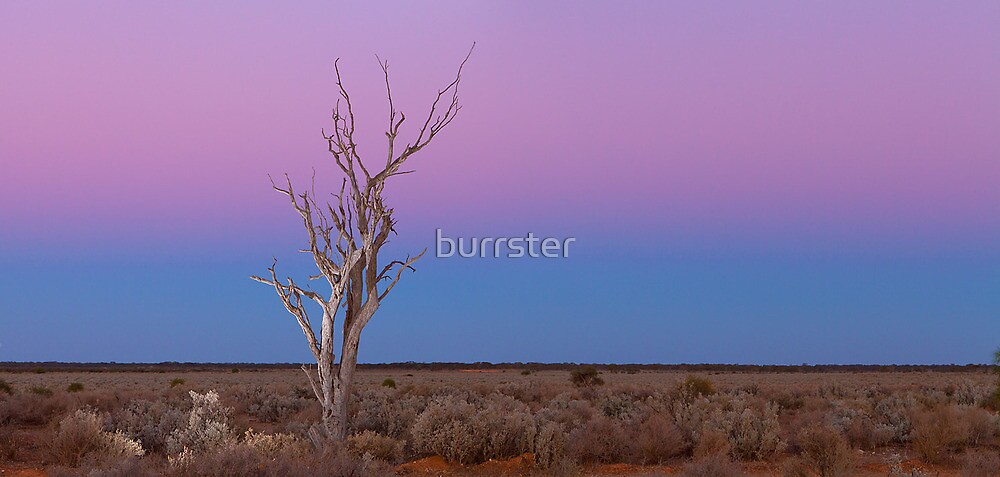 Standing alone during Sunset by burrster