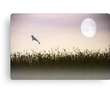ABOVE THE TALL GRASS Canvas Print