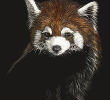 Huggable - red panda by Heather Ward
