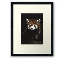 Huggable - red panda Framed Print