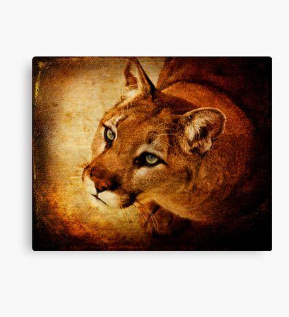 Panther Prayer Canvas Print