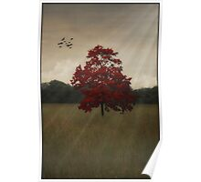 A TREE IN AUTUMN Poster