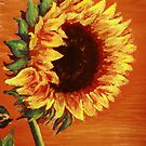 Sunflower by Angelica Farber