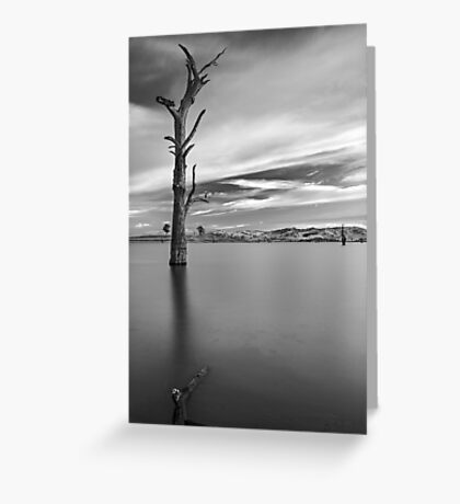 Portrait of Solitude Greeting Card