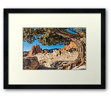 Puzzle Pieces of Pike Framed Print