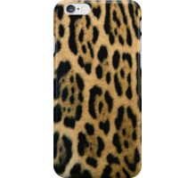 Animal Pattern 2 iPhone Case/Skin