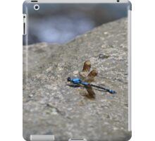 Blue Dragonfly iPad Case/Skin