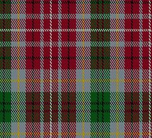 00106 British Columbia District Tartan Fabric Print Iphone Case by Detnecs2013