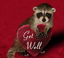 Get Well Raccoon by jkartlife