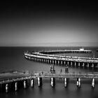 Aquatic Pier by Toby Harriman