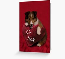 Get Well Sheltie Puppy Greeting Card