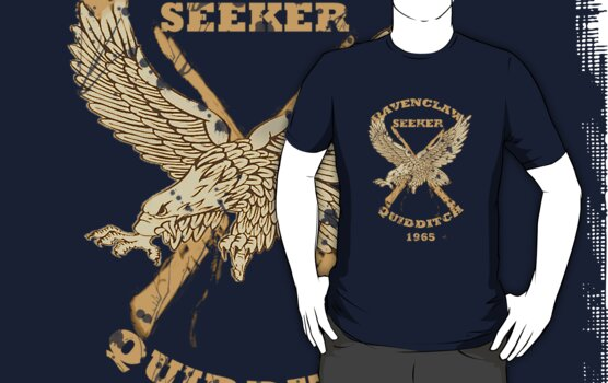 Harry Potter Ravenclaw Seeker by krishnef